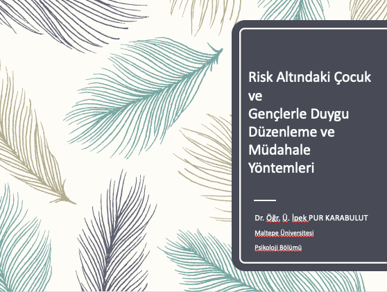 Risk Altındaki Çocuk ve Gençlerle Duygu Düzenleme ve Müdahale Yöntemleri